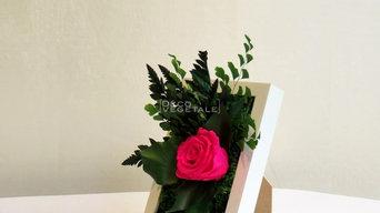 Sweet rose 2