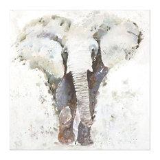 Uttermost 34349 Curiosity Hand Painted Elephant Art
