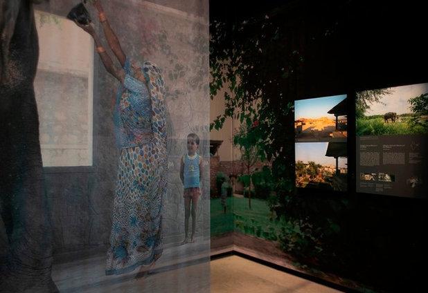 Венецианская биеннале 2018: простор свободе