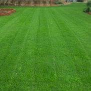 High-Tech Landscaping & Maintenance, LLC's photo