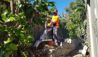 Tight Access Grinding Stump in Sydney