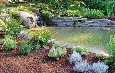 Presupuestos: ¿Cuánto cuesta hacer un jardín de 50 a 250 m²?
