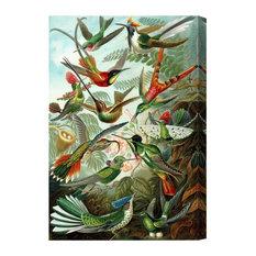 """Bird Study"" Canvas Art Print, 26x39 cm"