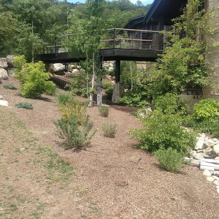 Bigelow a landscape remodel