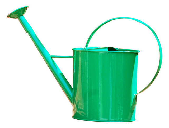 Metal 1 Gallon Watering Can With Long Spout Green