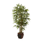 5 5' Bamboo With Decorative Planter