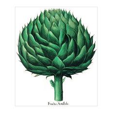 """Globe Artichoke"" Besler Botanical Print, 42x51 cm"