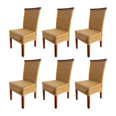 vidaXL Rattan Dining Chairs, Brown, Set of 6