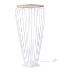 Cage LED Floor Lamp