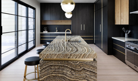 Dark and Handsome: New Looks for Kitchen Cabinets and Benchtops