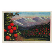 """""""Foothill Orange Grove in The Winter"""" Print, 12""""x18"""""""