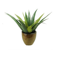 "16"" Artificial Green Agave Succulent Plant in a Decorative Brown Pot"