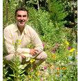 Pratolino Landscape Design's profile photo