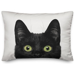 Contemporary Decorative Pillows by Designs Direct