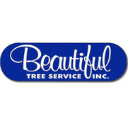 Beautiful Tree Service Inc's photo