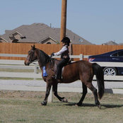 Randall Cates Stables, Inc.'s photo