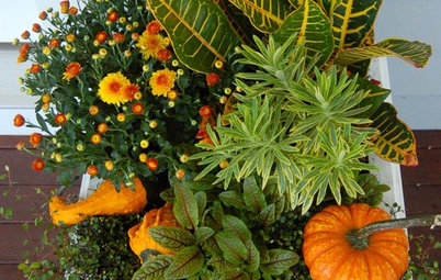 12 Fresh Fall Container Designs for Your Home and Garden