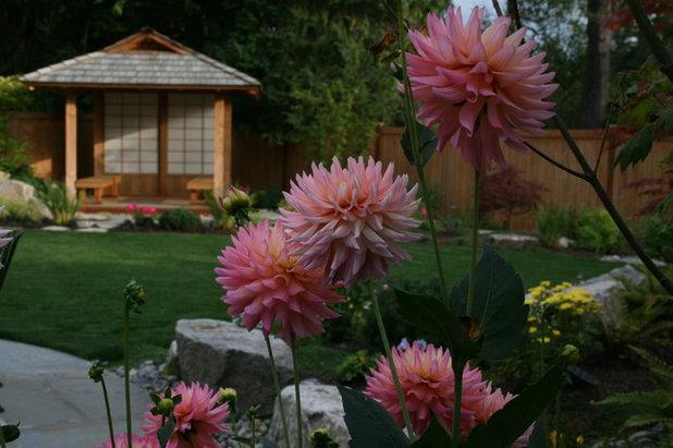 Asian Landscape Sammamish, Washington Residence