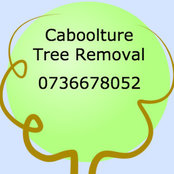 Caboolture Tree Removal's photo