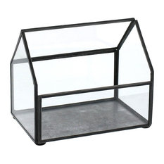 """5"""" Mini Table Top Display Case Terrarium, Glass Green House Collectibles Plants"""