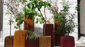 Indoor Green インドアグリーン