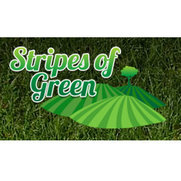 Stripes of Green's photo