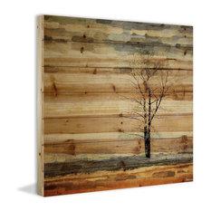 """Parvez Taj - """"Tree Stands Alone"""" Print on Natural Pine Wood, 32""""x32"""" - Fine Art Prints"""