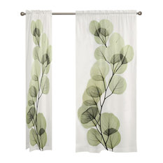 "Eucalyptus Sheer, 95""x50"""