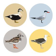 Plurr - Seabird Coasters, Set of 4 - Coasters