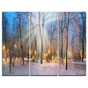 """Winter at Mariinsky Gardens"" Photo Canvas Print, 3 Panels, 36""x28"""