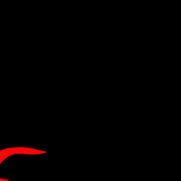 Foto di Stefano Niccolai - Arte Studio