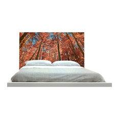 -inchAutumn Forest-inch Headboard