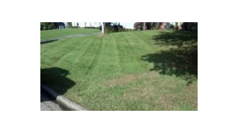 Customer Lawns
