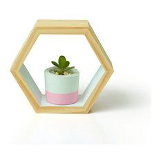 - Hexagon Shadow Box - White - Display and Wall Shelves