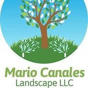 Mario canales landscape's photo