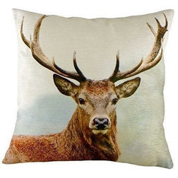 Eclectic Scatter Cushions by Emporium Cookshop