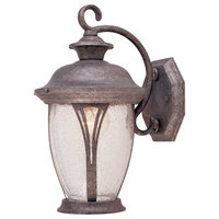 Westchester 1-Light Outdoor Wall Light, Rustic Silver