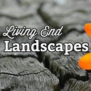 LIVING END LANDSCAPESさんの写真