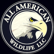 All American Wildlife's photo