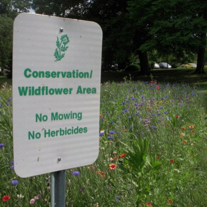 CONSERVATION WILDLIFE AREA NO MOWING NO CHEMICALS