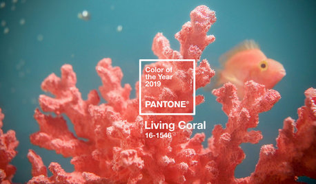 Pantone's Colour of the Year 2019 Revealed: Living Coral
