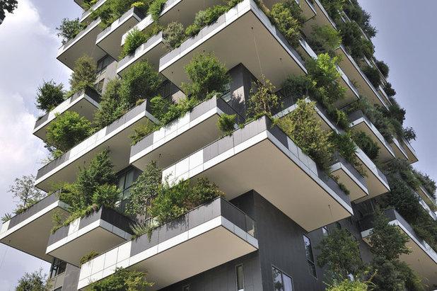 Houzz for Architettura olandese