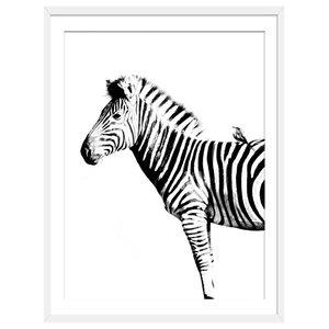 """""""Zebra Stripes"""" Animal Art Print, White Framed, 50x70 cm"""