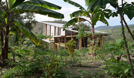 Ecuador Houzz Tour: A Forest Cabin Ramps Up Sustainable Design