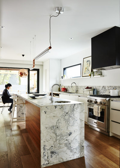 fantastic house renovation app.  Houzz Tour Graphic Monochromatic and Fantastic