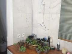 Freshen Up The Bath With Lush And Healthy Plants
