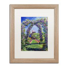 "David Lloyd Glover 'English Rose Arbor' Art, Birch Frame, 16""x20"", White Matte"