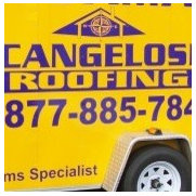 Cangelosi Roofing's photo
