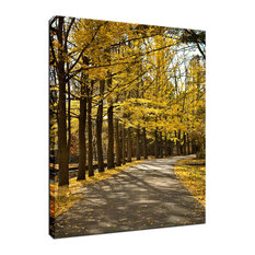 """Fall Path"" Autumn Foliage Landscape Photograph Fine Art Canvas Wall Art Print,"