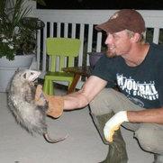 A Wildlife Pro DFW's photo